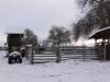 ranch-5
